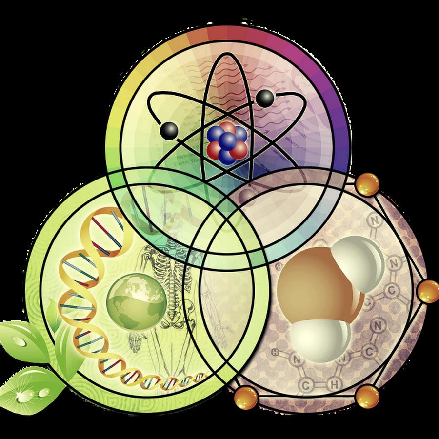 Картинки и рисунки по биологии