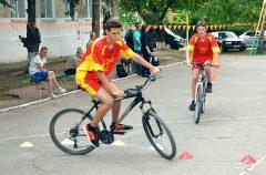 Веловождение